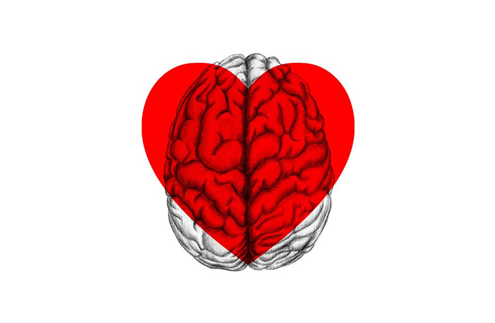 An illustration of a heart and a brain on top of each other